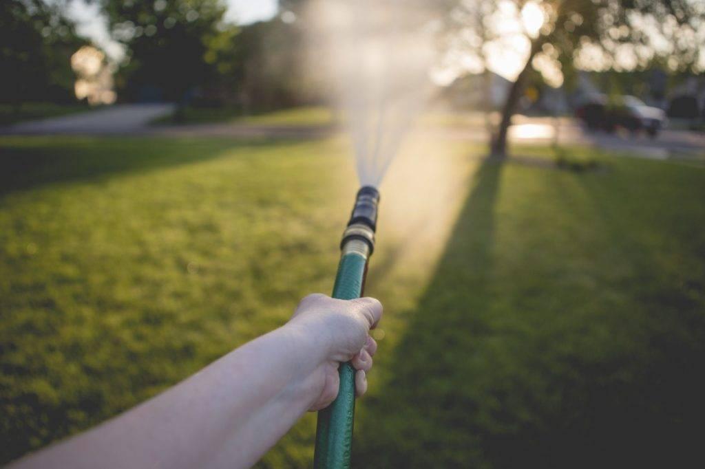 Watering Lawn - iStock_000041289130_Medium
